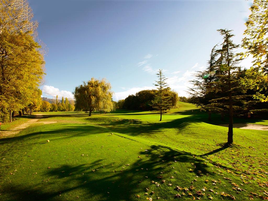 golf de la varietăți varicoase)